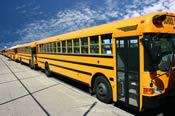Photo of school buses.